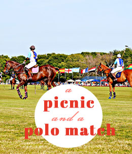 A Picnic and a Polo Match