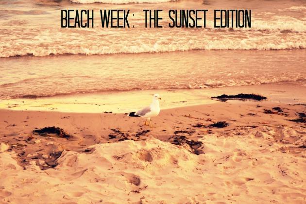Beach Seagull A RTC